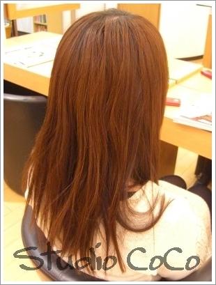 クリアカラー+草木染め(前)