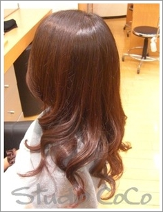 Botanical Hair Treatment 01 @Himeji Hair Salon