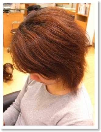 縮毛矯正・ストレートパーマのビフォー01 @姫路駅前美容室・美容院・ヘアサロン