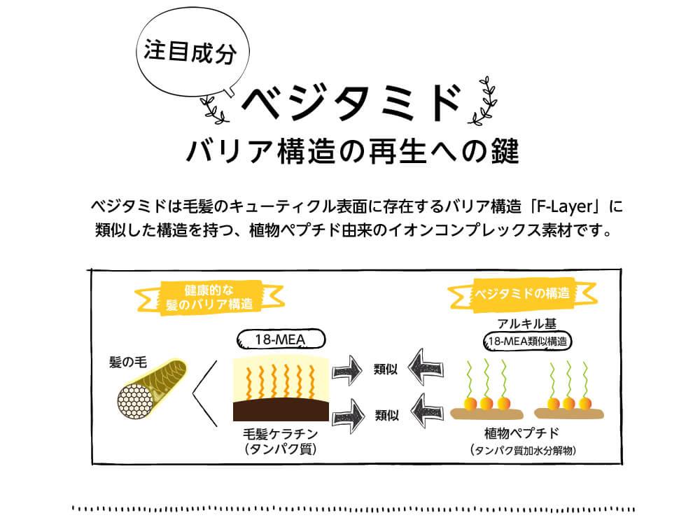 ベジコン(トリートメント2剤の説明)ベジタミド