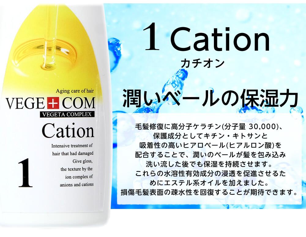 ベジコン(トリートメント1剤の説明)