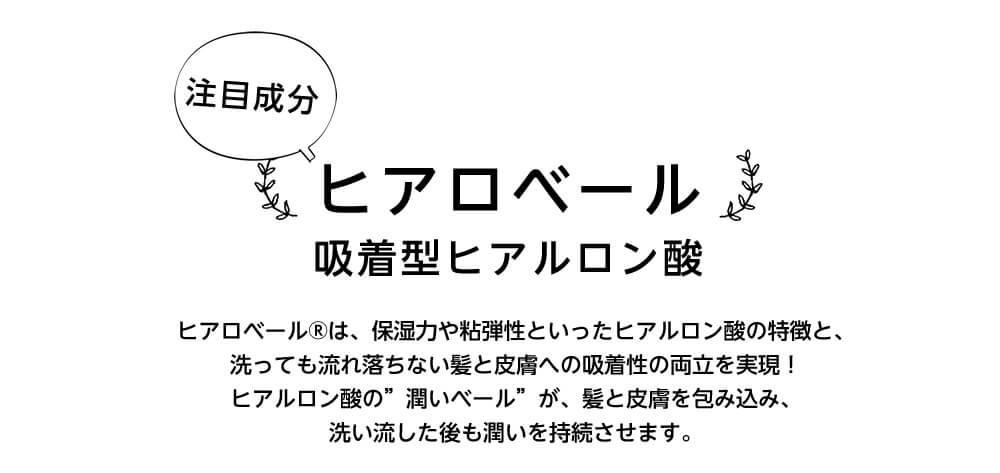 ベジコン(トリートメント1剤の説明)ヒアロベール