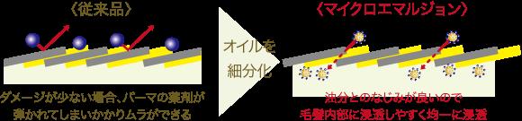 ボタニカルパーマ(BATANICAL WAVE)マイクロエマルジョンの説明