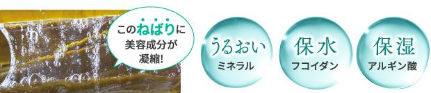 利尻カラークリームに配合される成分(利尻昆布、フコイダン、アルギニン酸)