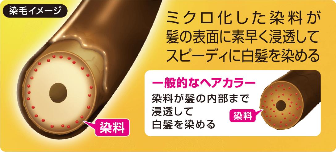 サロンドプロ ヘアマニキュアが髪を染めるイメージ画像